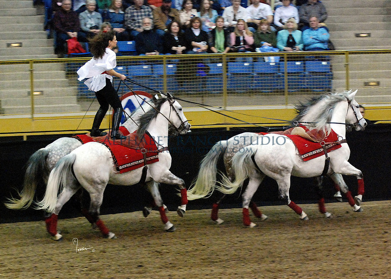 Roman Riding 4147 al sh300