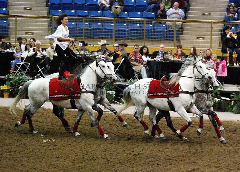 Roman Riding 4152 al sh300