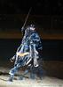 Zorro 4454 al il  78 sh300
