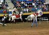 Roman Riding 4159 al sh300