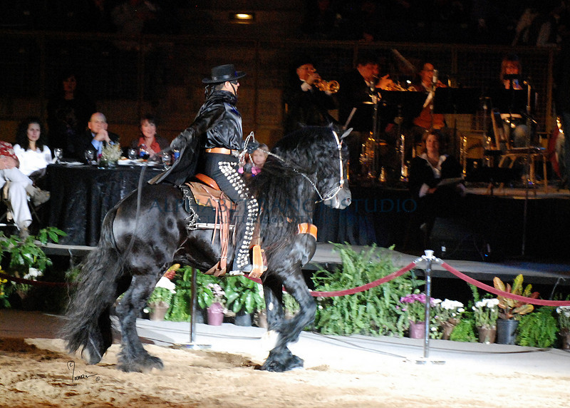 Zorro 4459 al il  86 sh300