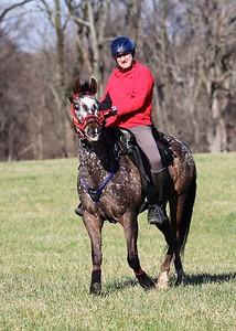 Foxcatcher endurance 2015 262015-04-11