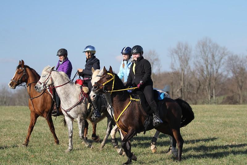 Foxcatcher endurance 2015 232015-04-11