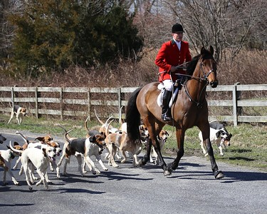 The Chino Chase  Foxhunts