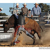 rodeo2009_18238