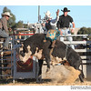 rodeo2009_18129