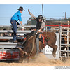 rodeo2009_17815