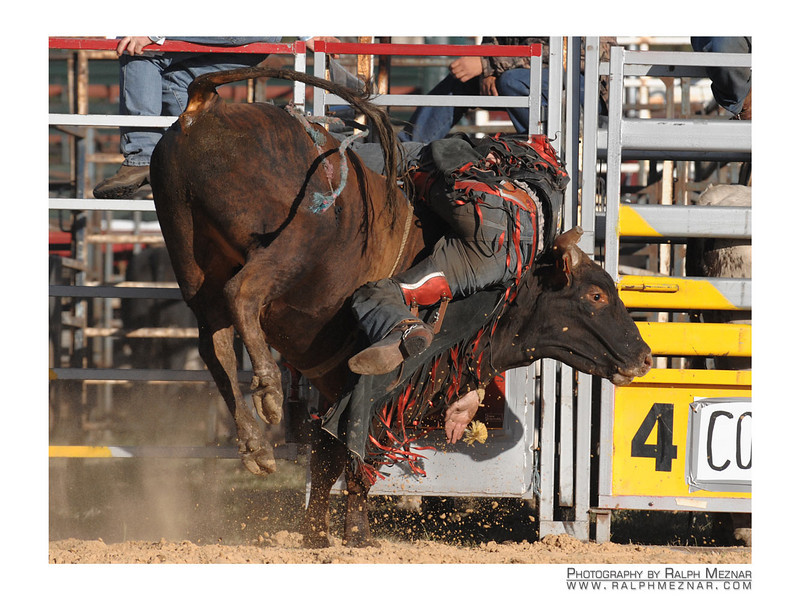 rodeo2009_17835