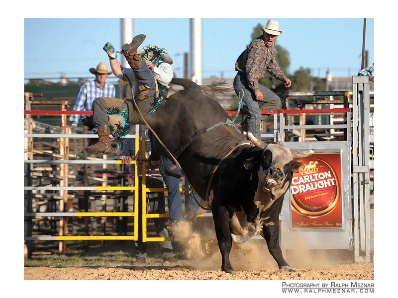 rodeo2009_18134