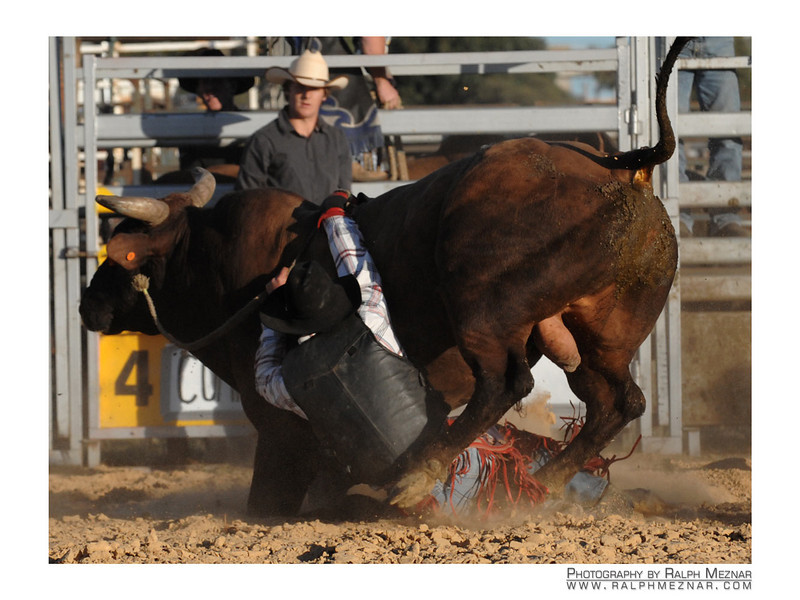 rodeo2009_18241