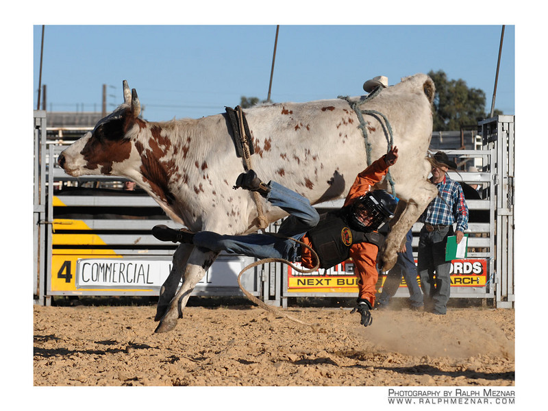 rodeo2009_17963