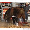 rodeo2009_18245