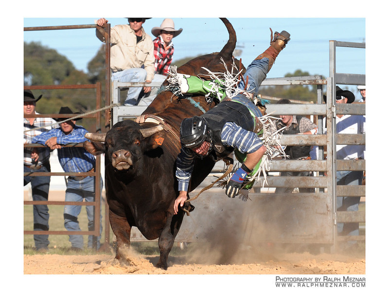 rodeo2009_17741