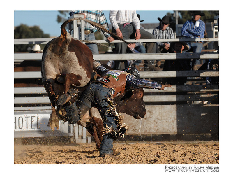 rodeo2009_18212