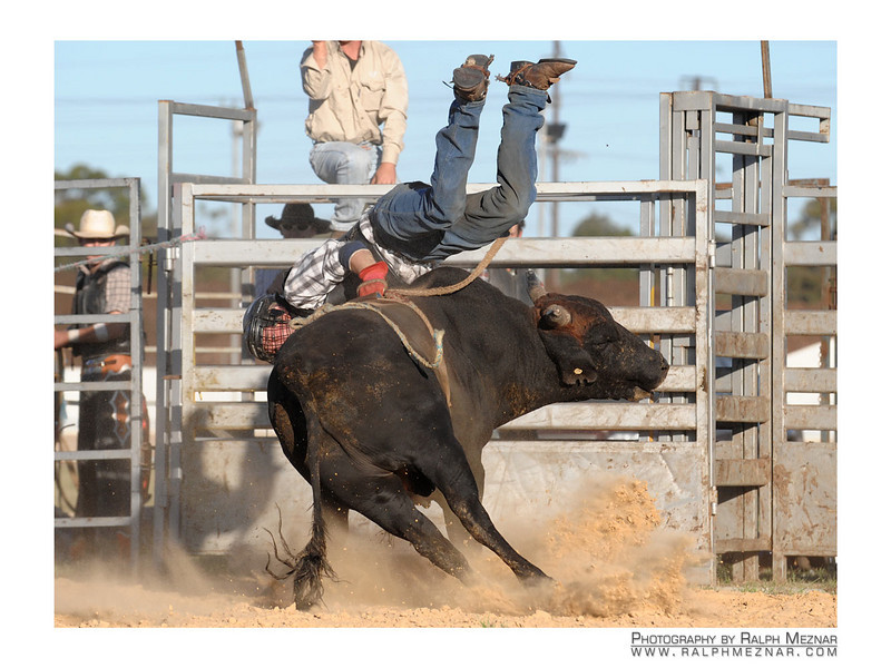 rodeo2009_18031