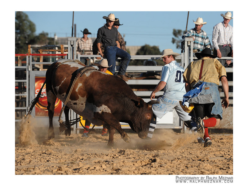 rodeo2009_18226