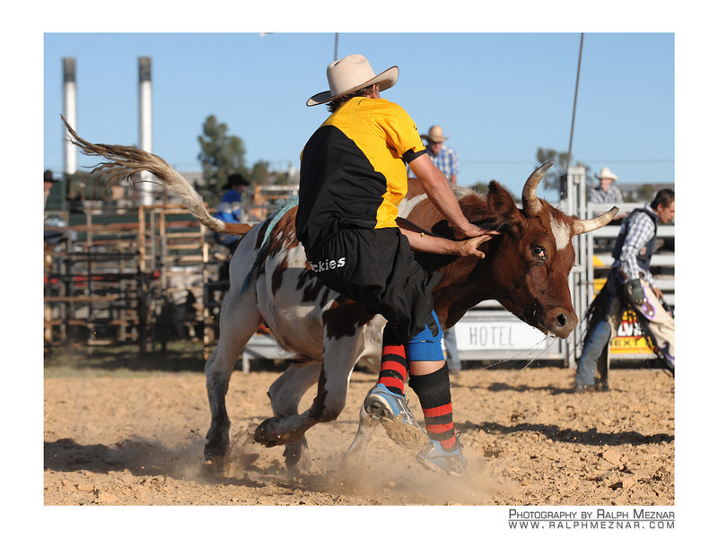 rodeo2009_17906