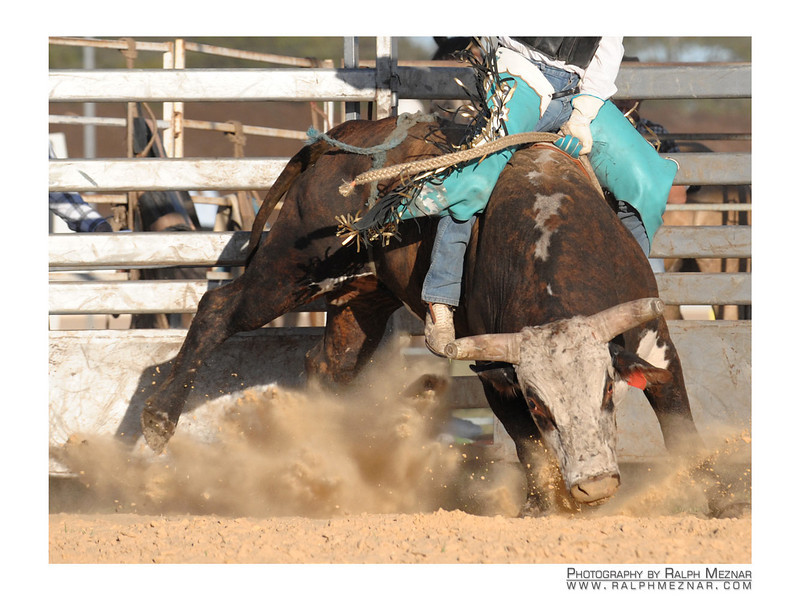 rodeo2009_18096