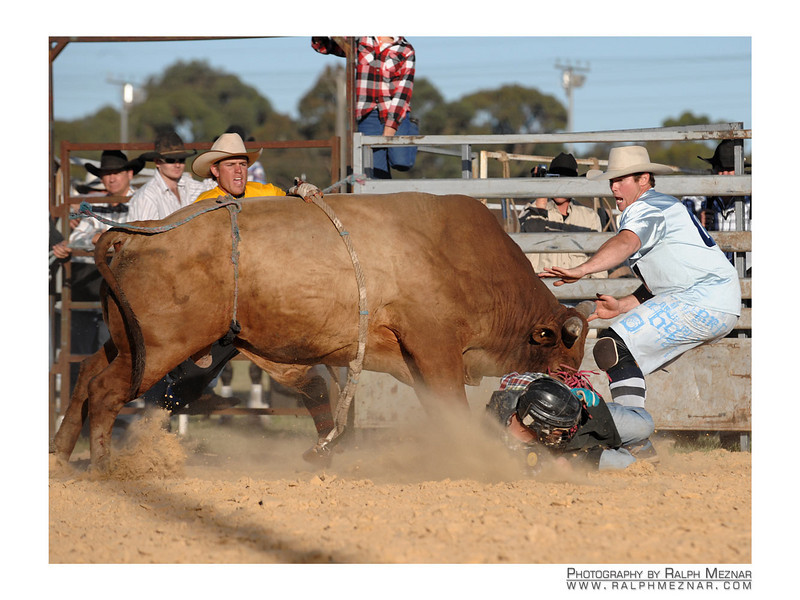 rodeo2009_18017