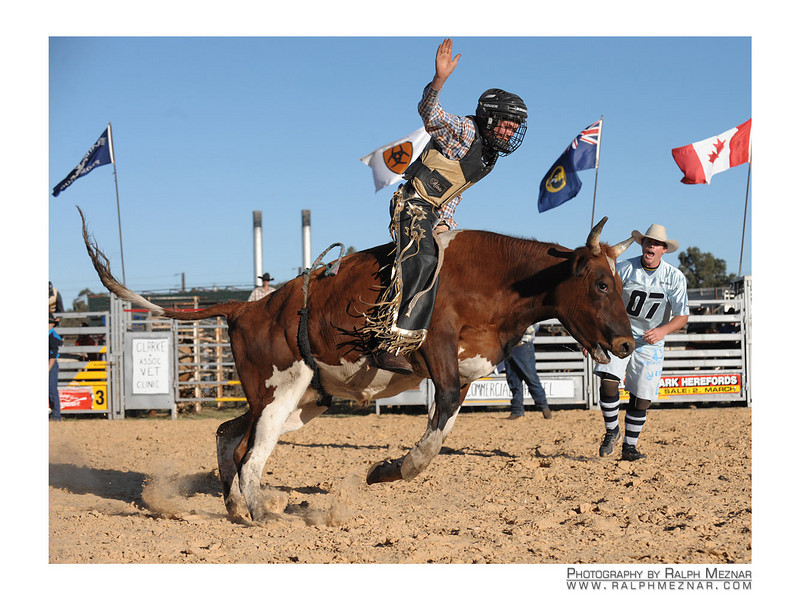 rodeo2009_17916