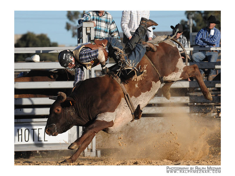 rodeo2009_18204