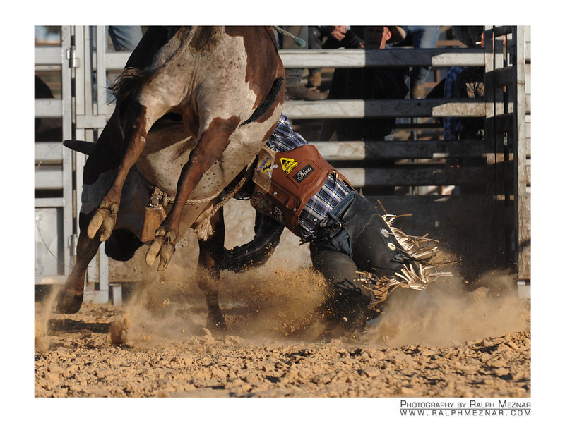 rodeo2009_18214
