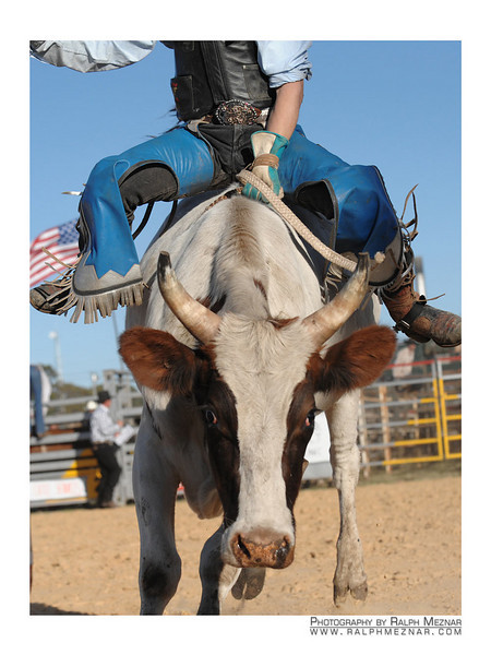 rodeo2009_17869