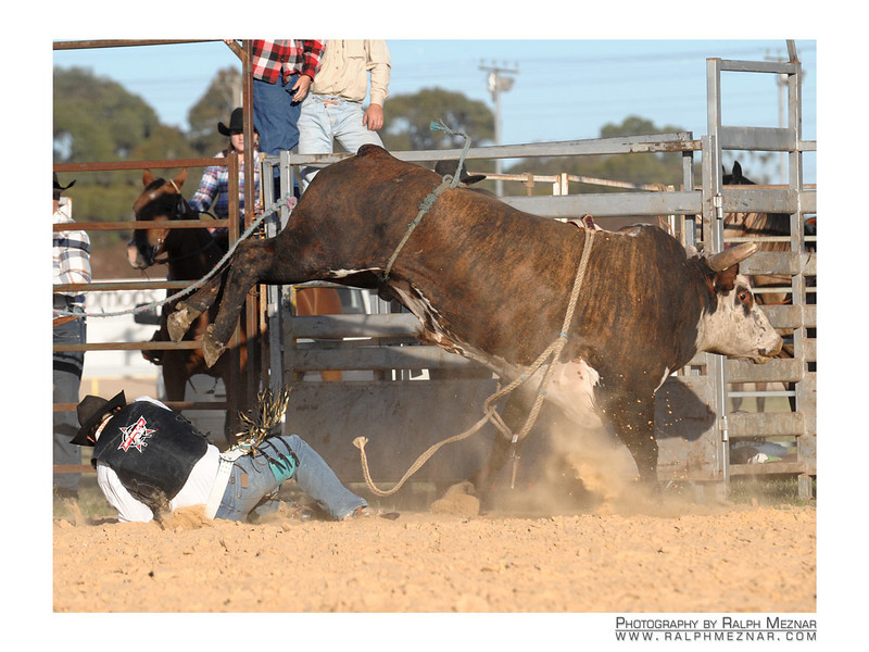 rodeo2009_18104