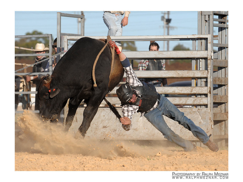 rodeo2009_18035