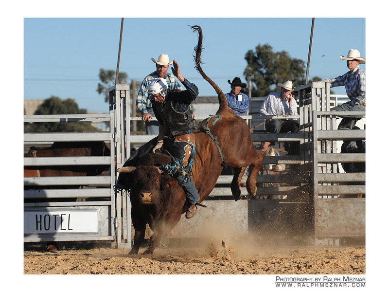 rodeo2009_18144