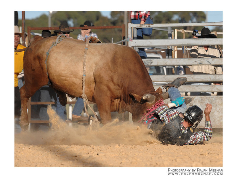 rodeo2009_18015