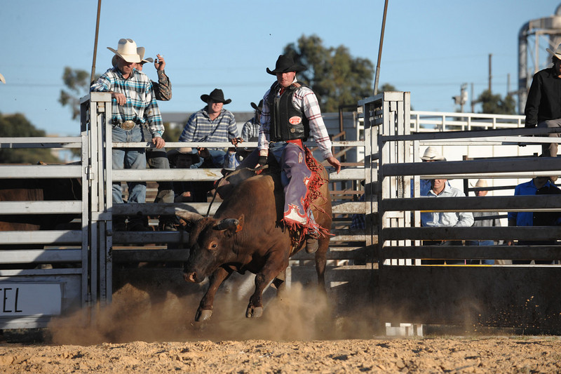 rodeo2009_18229