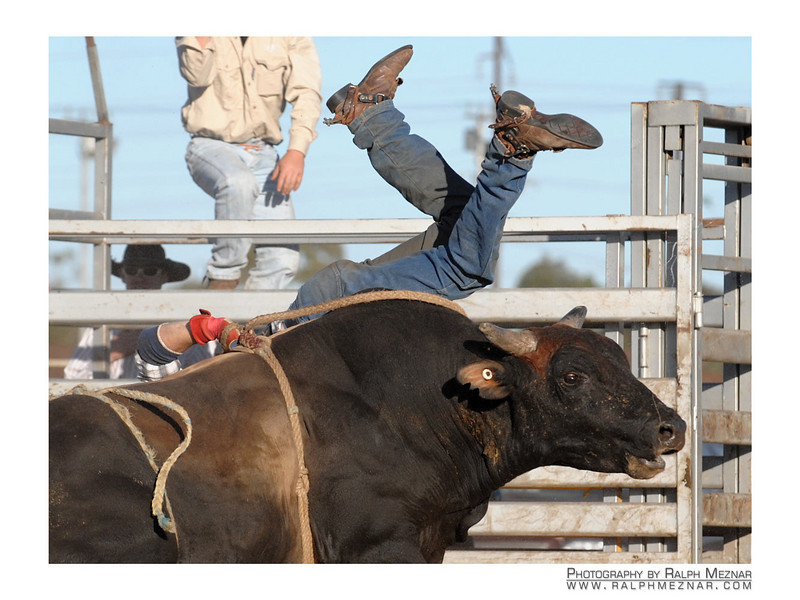rodeo2009_18032