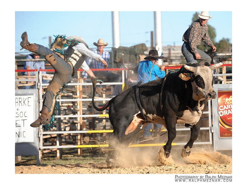 rodeo2009_18135