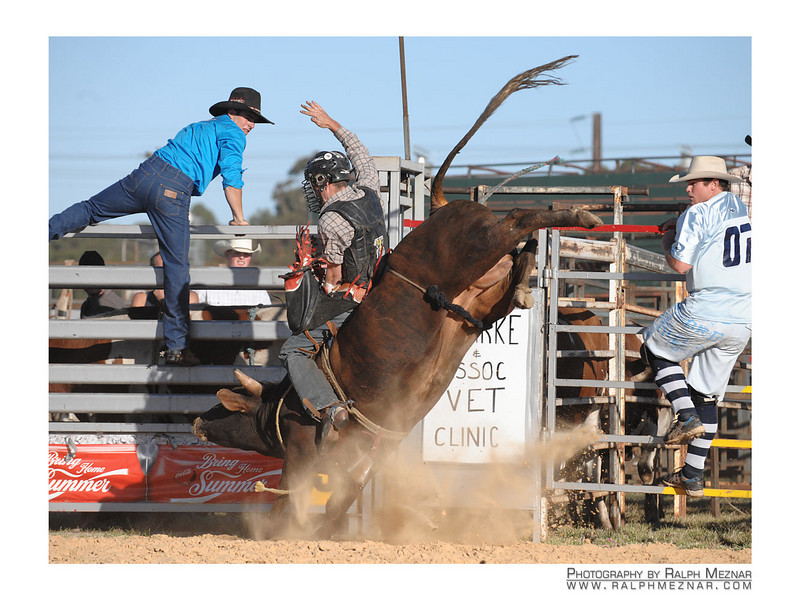 rodeo2009_17812