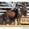rodeo2009_17837
