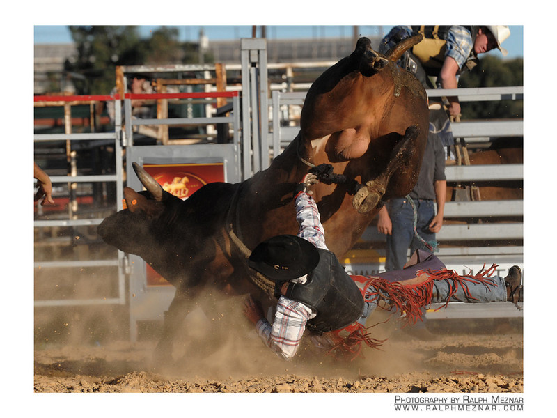 rodeo2009_18244