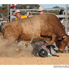 rodeo2009_18019