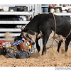 rodeo2009_17685