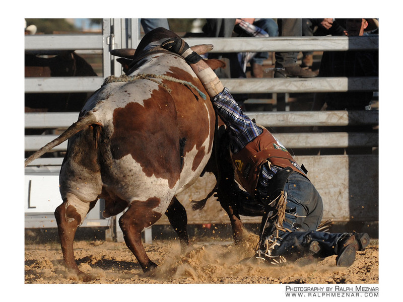 rodeo2009_18213
