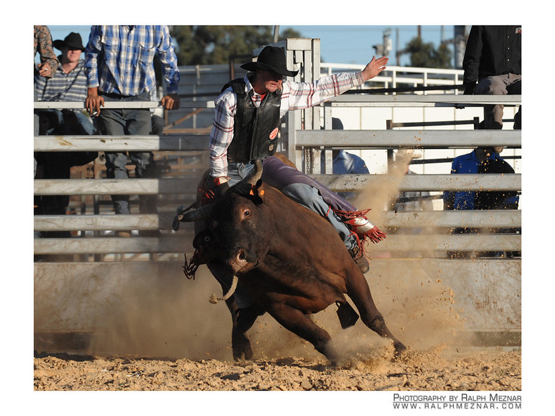 rodeo2009_18231