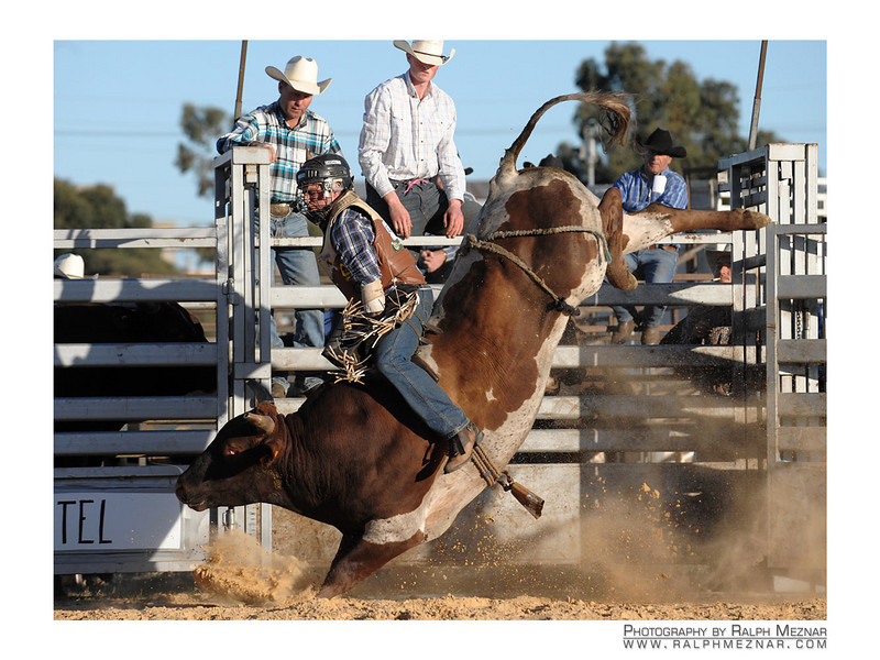 rodeo2009_18201