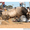 rodeo2009_18122