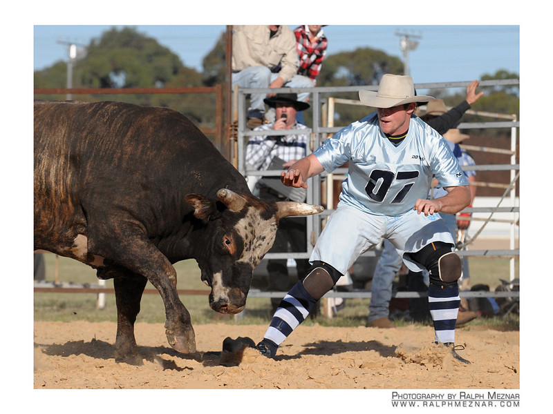 rodeo2009_17732