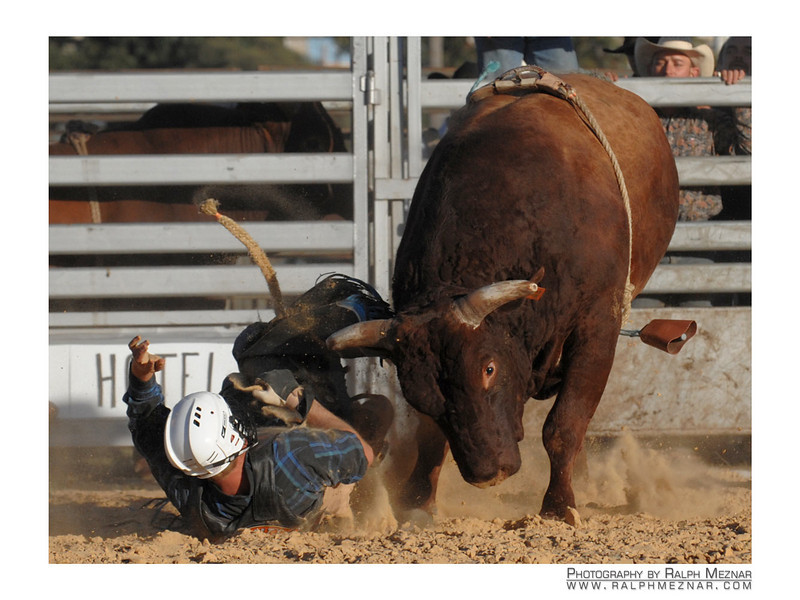 rodeo2009_18156