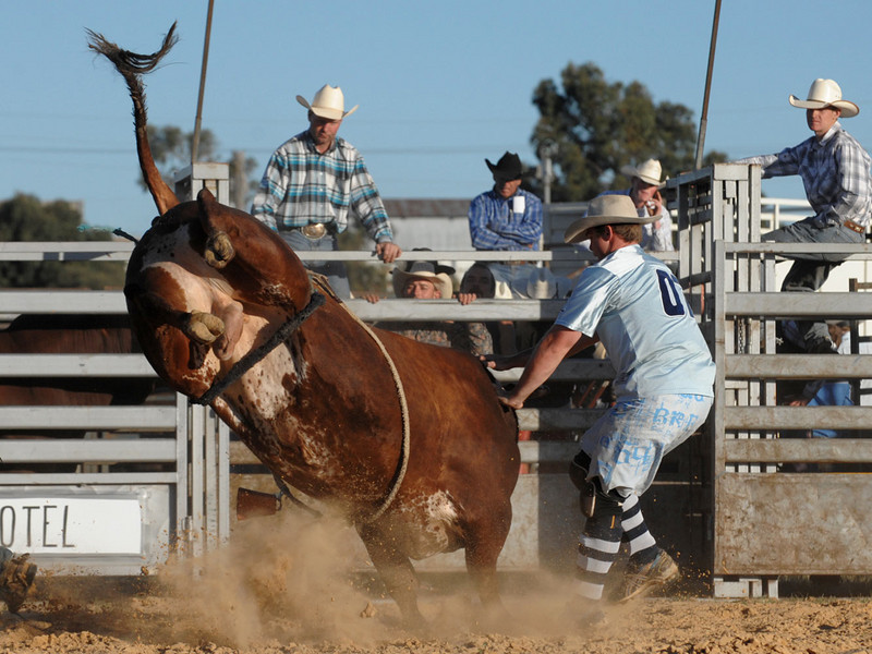rodeo2009_18159