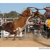 rodeo2009_18000