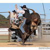 rodeo2009_17721