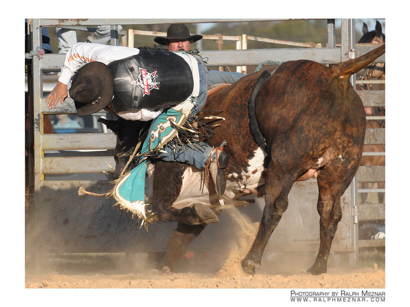rodeo2009_18101