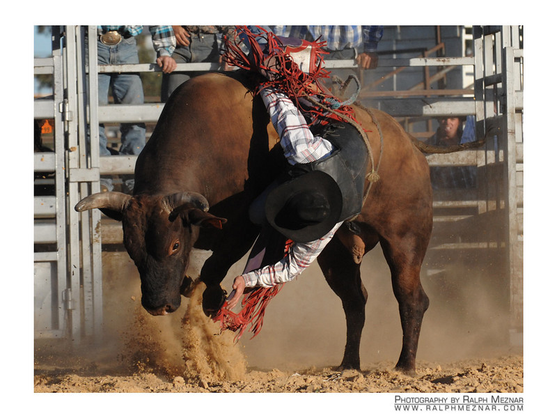 rodeo2009_18235